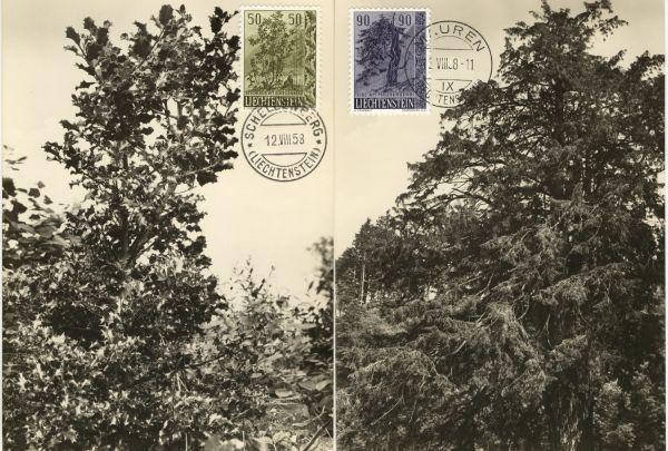 Liechtenstein Mi.Nr.371-73 Alte Maximumkarten